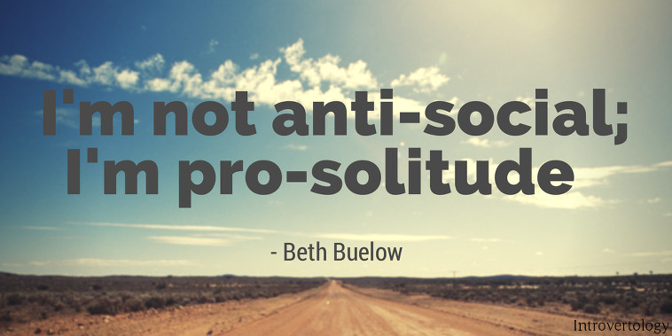 Quotes On Solitude Fascinating 19 Positive Quotes About Solitude  Introvertology